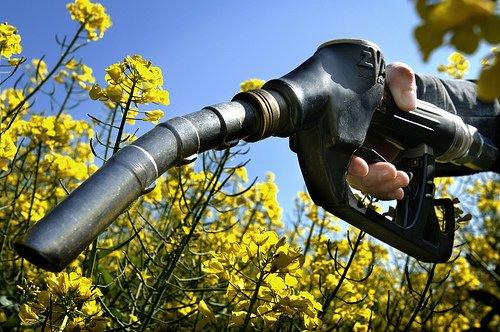 bio carburant huile recyclée