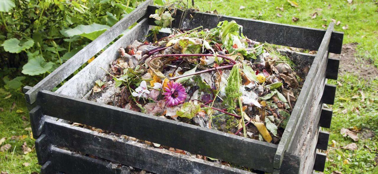 huile végétale dans le compost, bonne action ou pas?