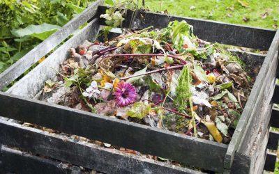 Peut-on mettre nos huiles usagées dans le compost?