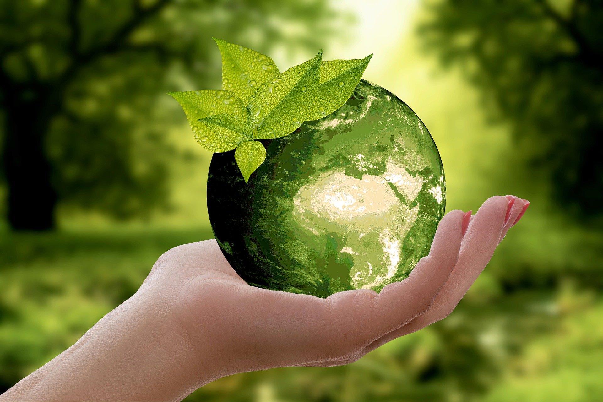 L'huile de friture se recycle en biodiesel