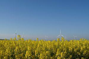 Biocarburant de première génération