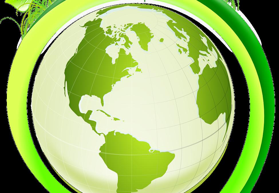 Revalorisation de l'huile de friture : les initiatives se multiplient