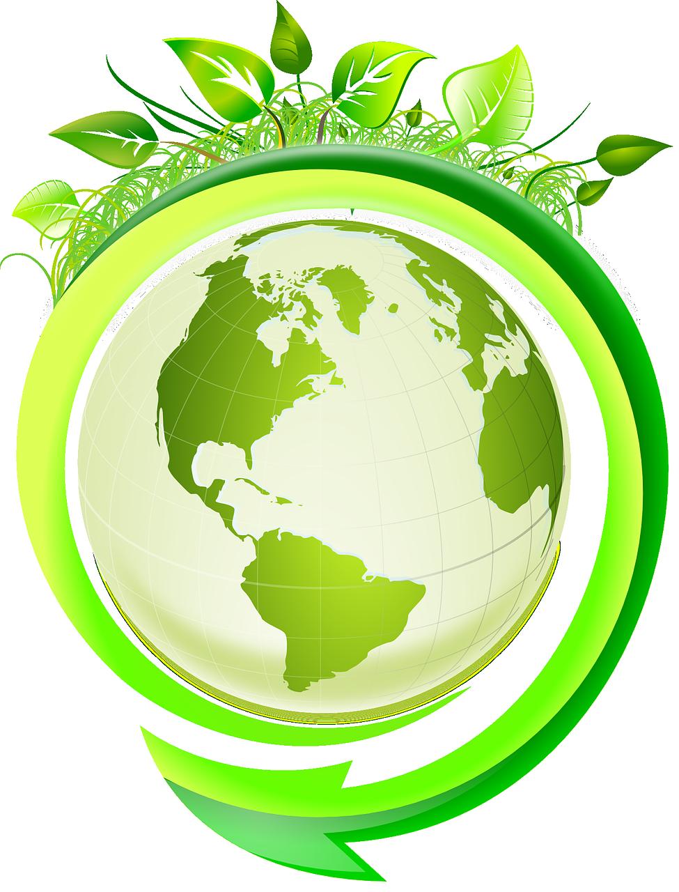 Recyclage d'huile de friture : les solutions existent